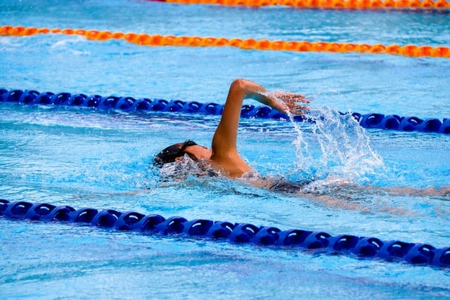 person swimming in a pool between lanes